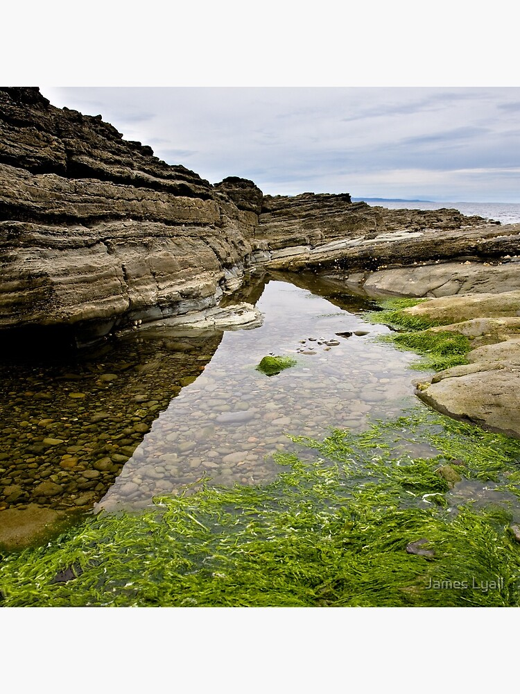 Reflecting the Tide by corwin