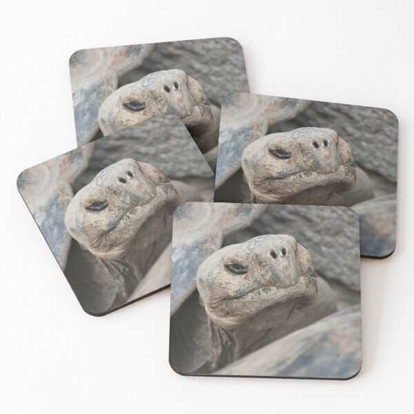 The ancient one Coasters (Set of 4)