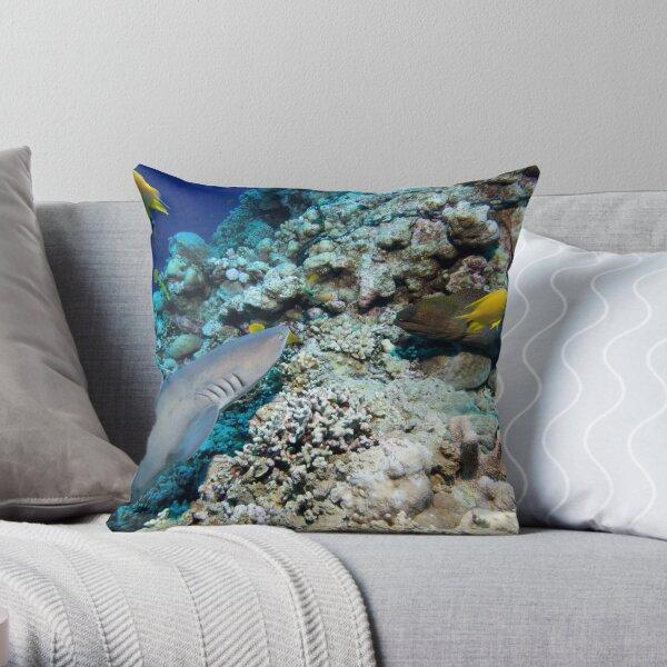 Osprey Reef - Shark and Moray Throw Pillow