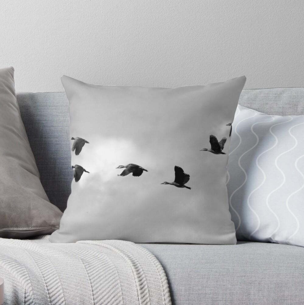 Flight Seven Throw Pillow