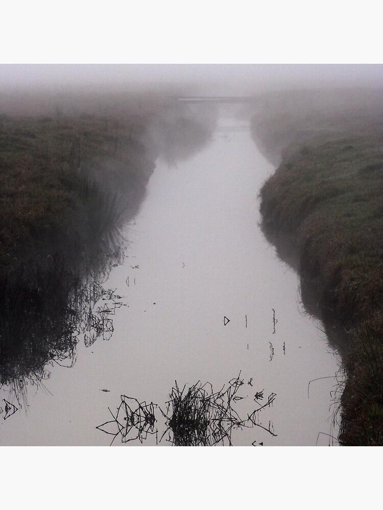 Misty Marsh by theoddshot