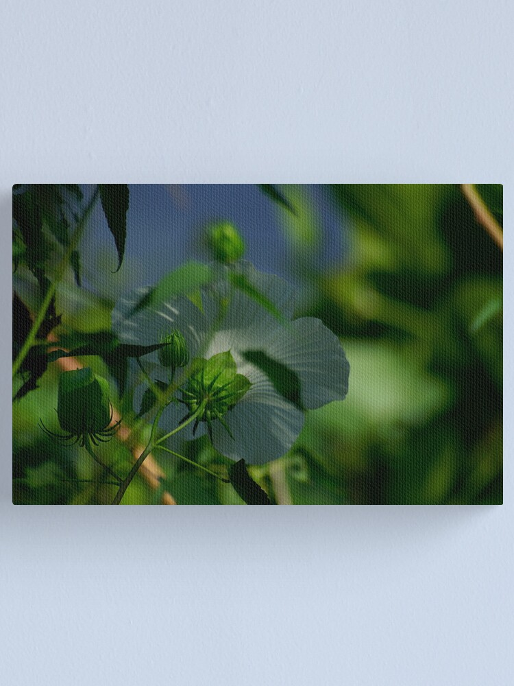 Alternate view of Flower and Puds Canvas Print