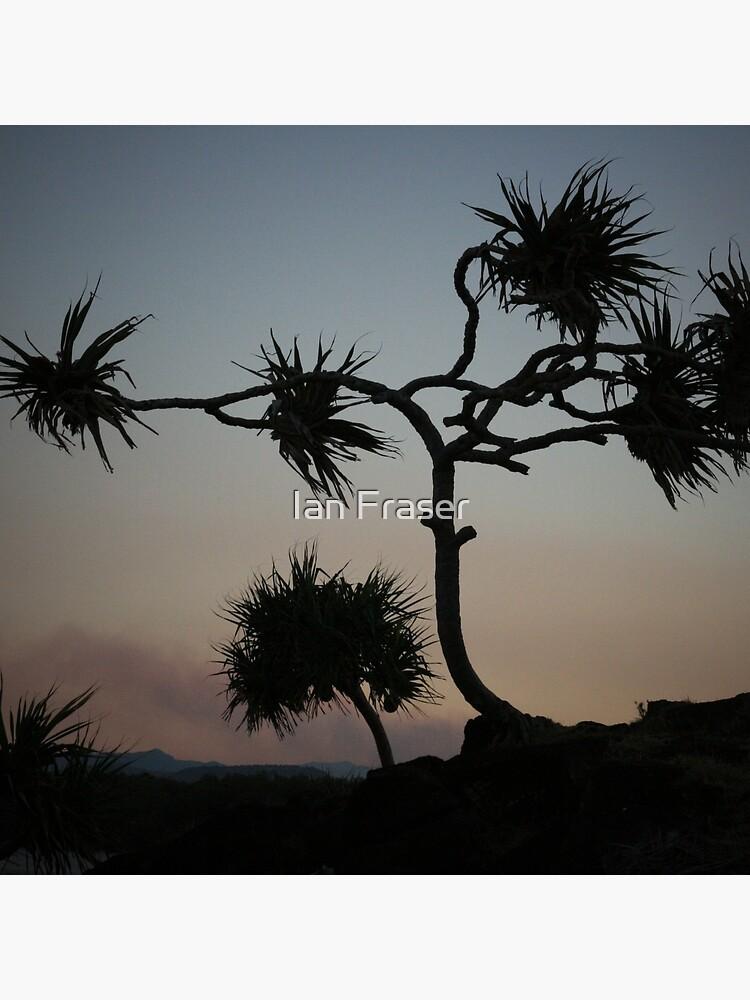 Dark Wind by Mowog