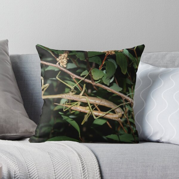 He lost his head... Throw Pillow