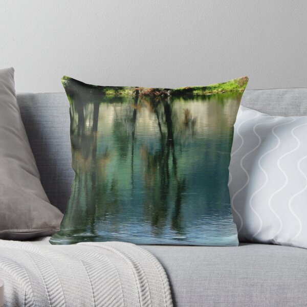 Shades and Stages Throw Pillow