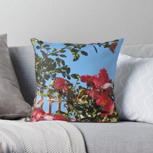 Splendid Mood Throw Pillow