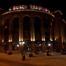 Busch Stadium by Steve Baird