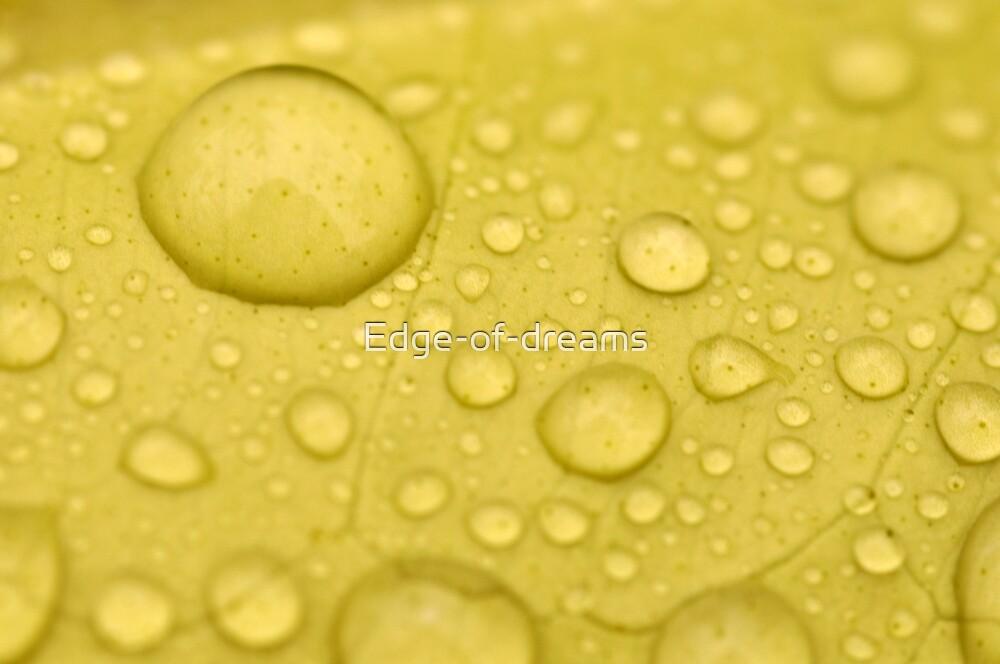 Lemon Drops by Edge-of-dreams