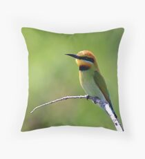 Merops ornatus Throw Pillow