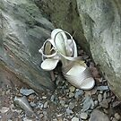 The wedding shoes by Elspeth  McClanahan