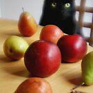 Black Cat with Fruits von Marianna Tankelevich