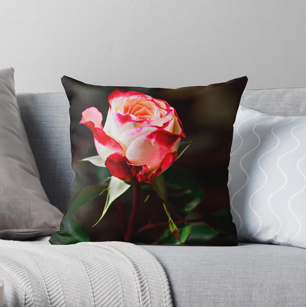 Bright & Vivid I Savor Her Softness Throw Pillow