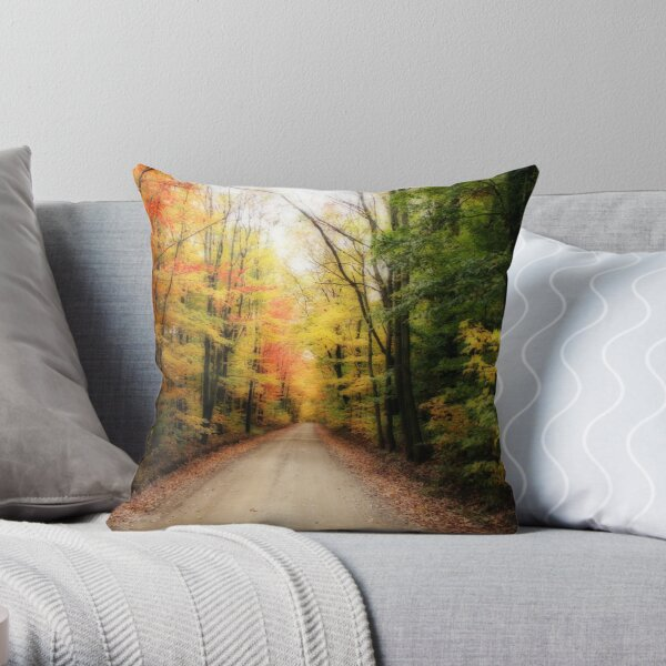 Straight Is The Road Throw Pillow