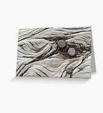 Weathered Jetty Plank Greeting Card