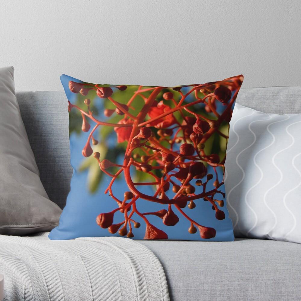 Brachychiton Acerifolius - Flame Tree Throw Pillow