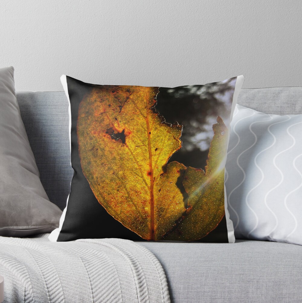 t o r n  Throw Pillow