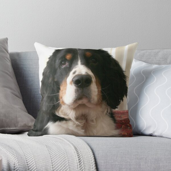Mr. Darcy Throw Pillow