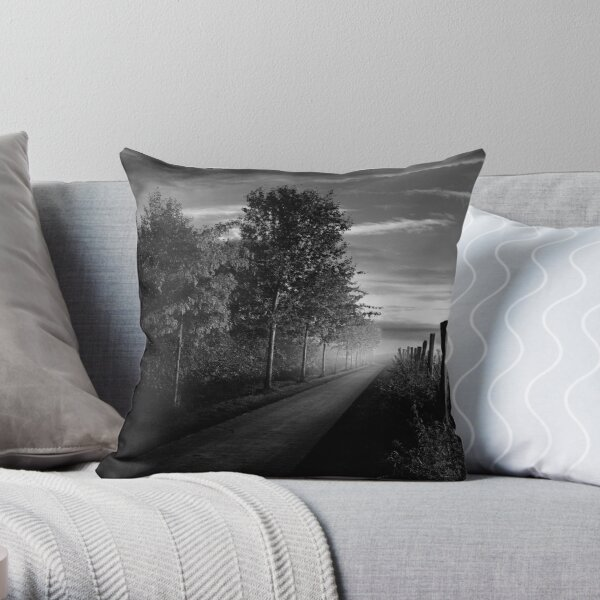 Path in the evening Throw Pillow