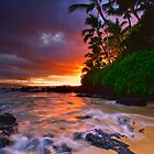 Pa'ako Beach Gold by Ken Wright