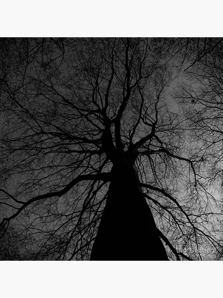 Tree by Delbaere