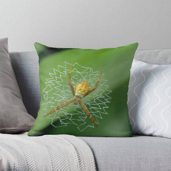 Juvenile St Andrew's Cross Spider Throw Pillow