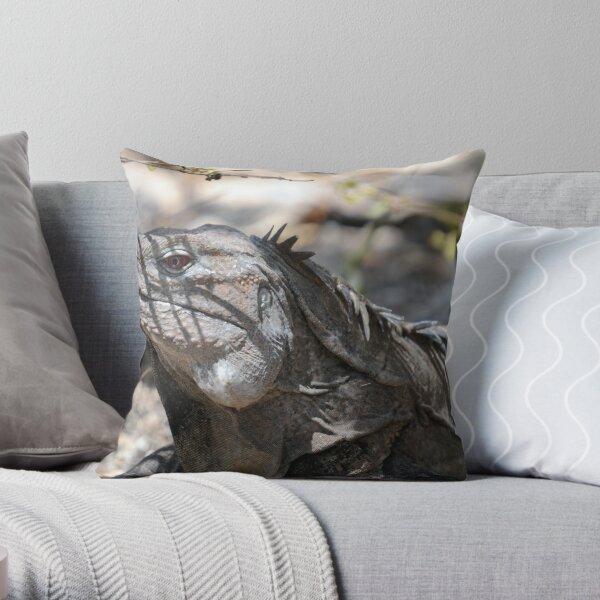 Ricord's Iguana Throw Pillow