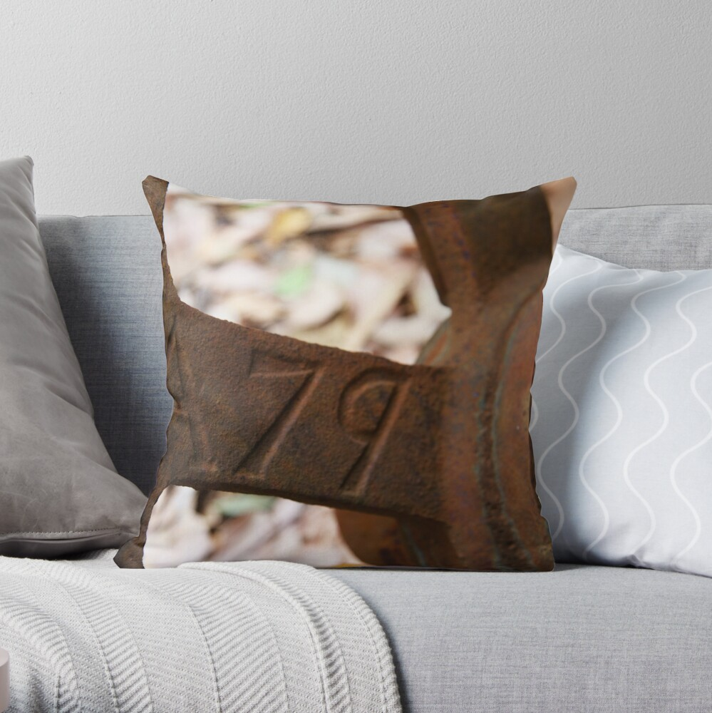 A79 Throw Pillow