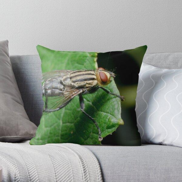 Flesh fly Throw Pillow