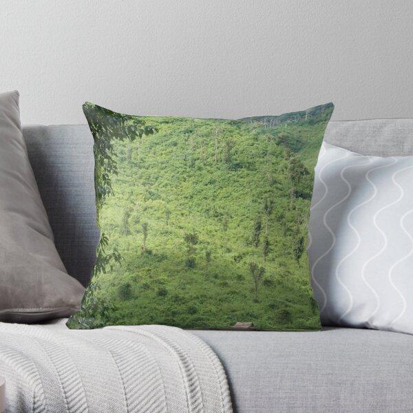 Laotian field hut Throw Pillow