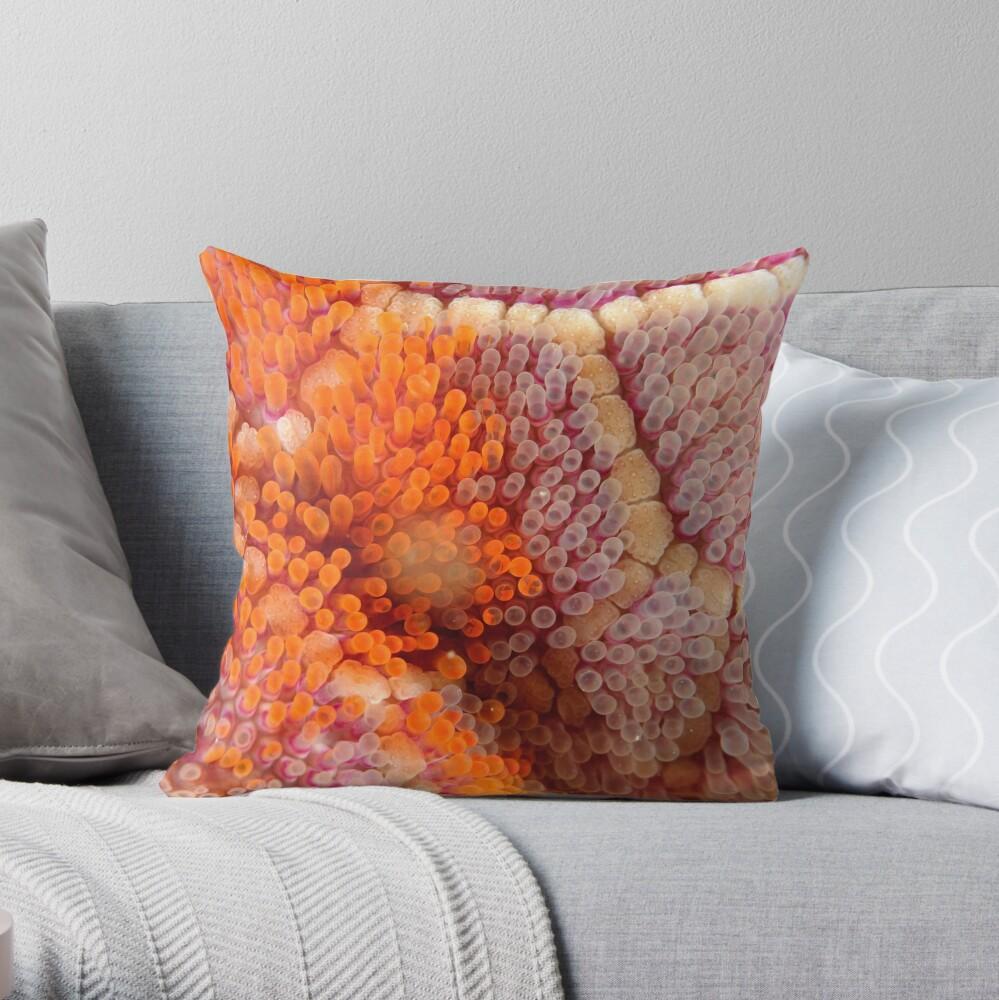 Mosaic Sea Star Macro Throw Pillow