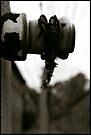 Auschwitz I Electrified Fence by Peter Harpley