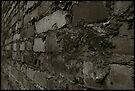 Auschwitz I Block Wall by Peter Harpley