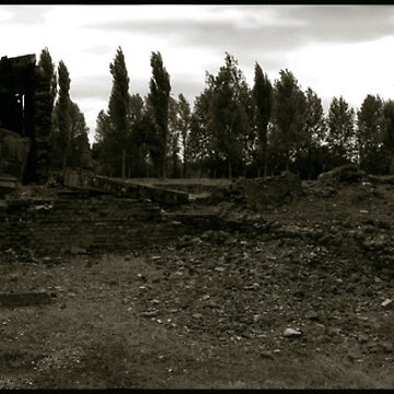 Auschwitz Birkenau - Gas Chamber and Crematoria I by PeterHarpley