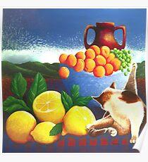 Cat washing beside lemons Poster