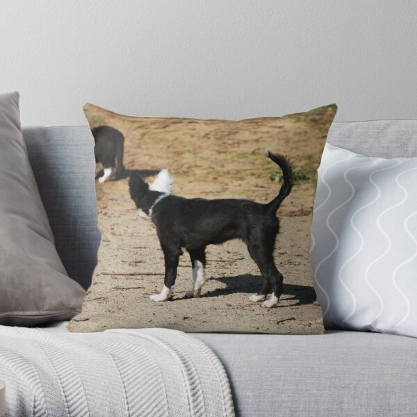 Strange Dog? Throw Pillow