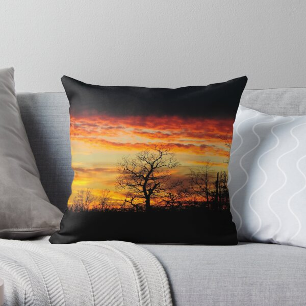 Flames On High Throw Pillow
