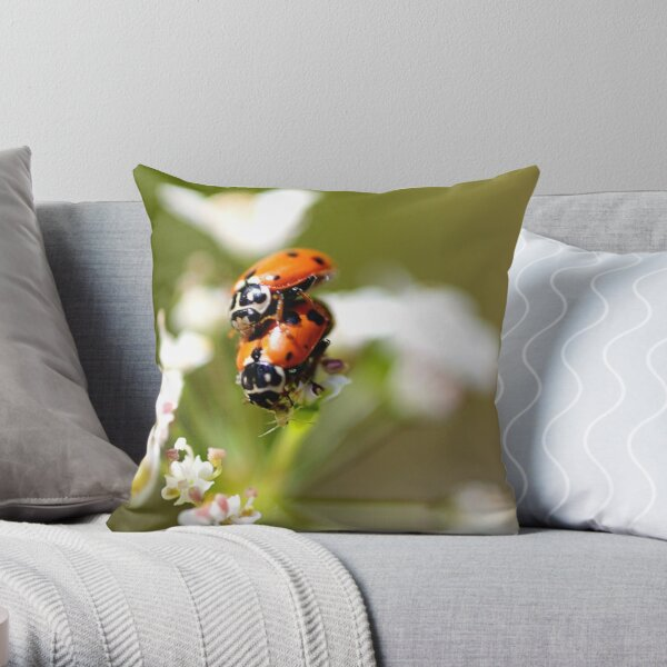 ~Privacy Please~ Throw Pillow