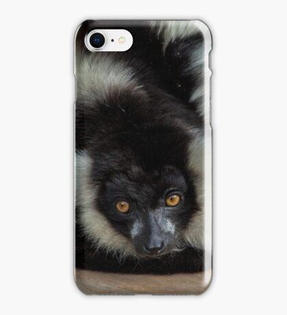 Black and White Ruff Lemur iPhone Case/Skin