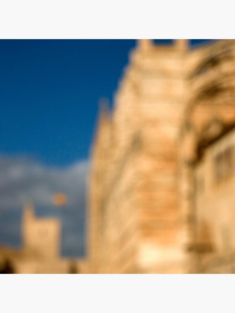 La Seu - Palma de Mallorcas 12th Century Cathedral by rogues70