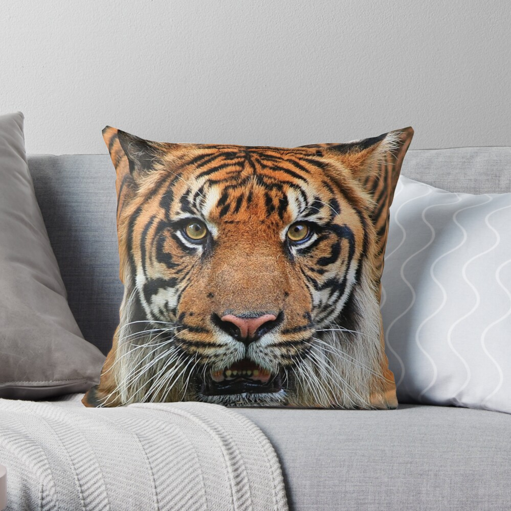 Got you .... Throw Pillow