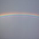 Rainbow Gentle by Victoria McGuire