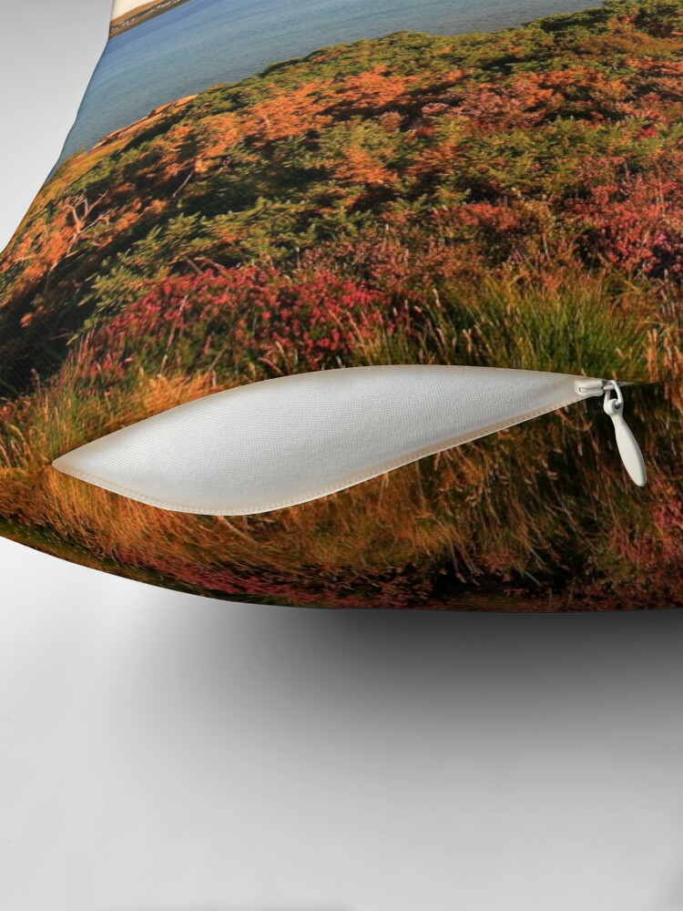 Alternate view of Gairloch Throw Pillow