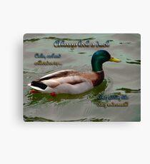 Look Like a Duck Canvas Print