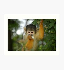 Flower Monkey Too Art Print