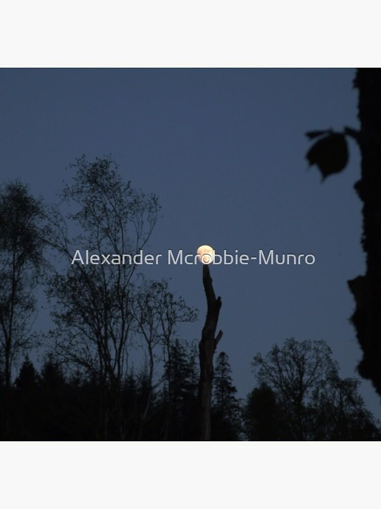 Moontree by Alexanderargyll