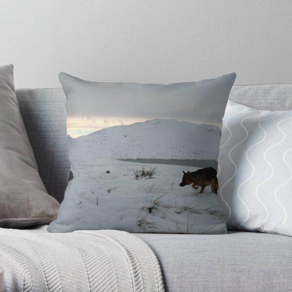 Brrrrrrrrrrrrr Throw Pillow