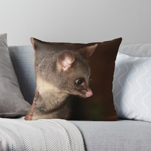 My what big eyes you have! Throw Pillow