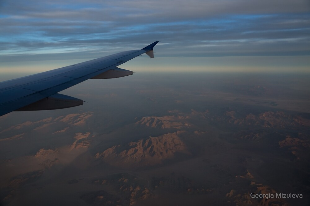Flying Over the Mojave Desert at Dawn by Georgia Mizuleva