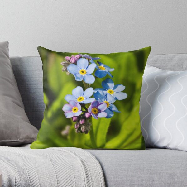 Forget-me-not Flowers (Myosotis arvensis) Throw Pillow
