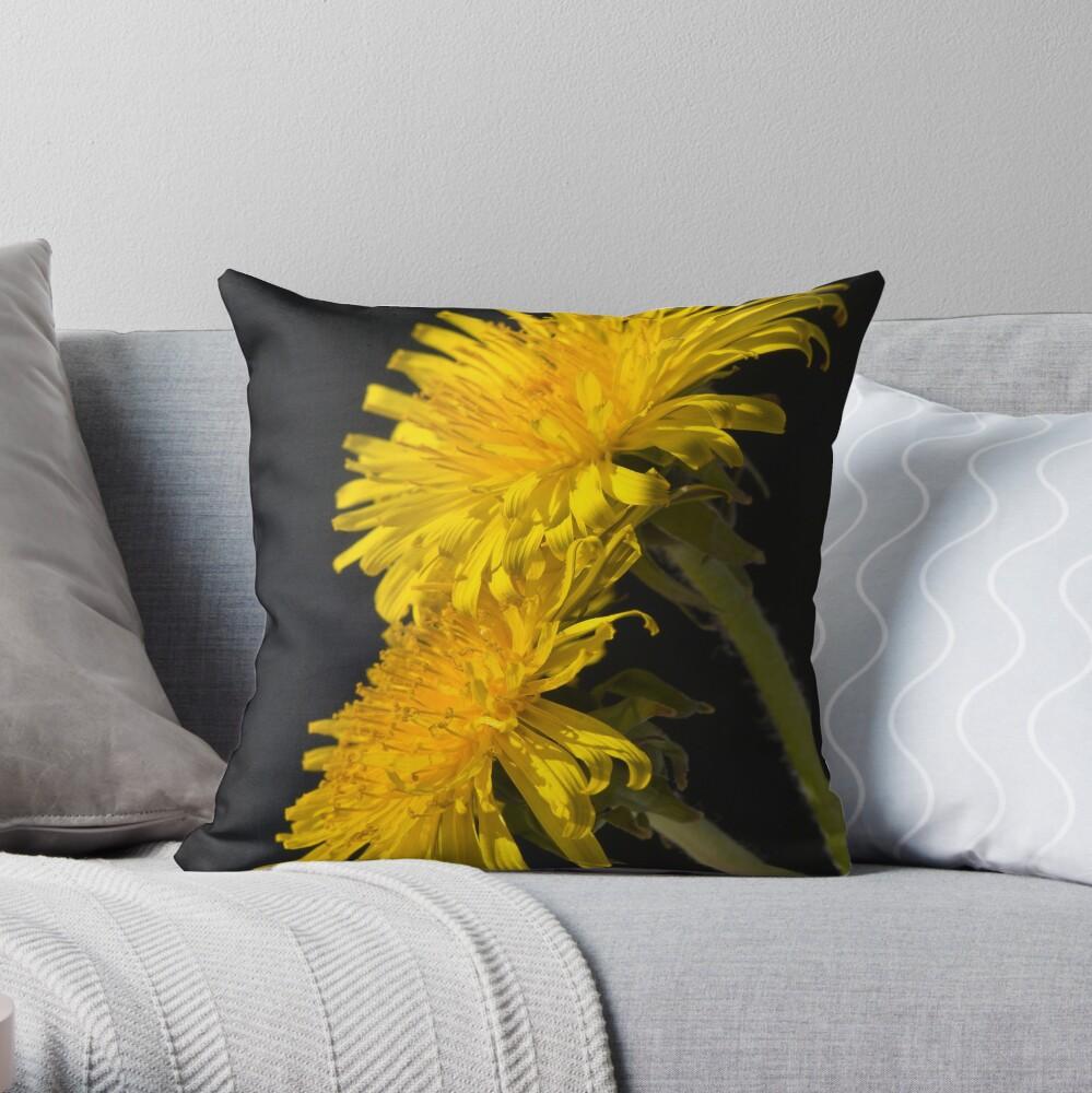 Three Dandelions (Taraxacum officinale) Throw Pillow